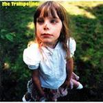 The Trampolines.jpg